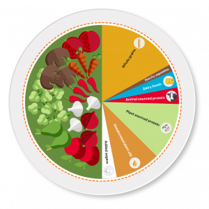EAT-Lancet_PHD_Plate_RGB-02
